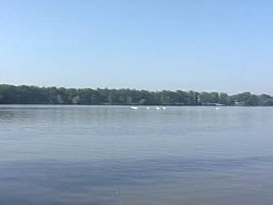 Vrbenské rybníky na Českobudějovicku
