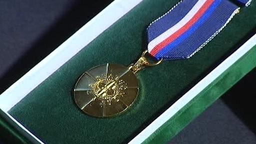 Medaile za statečnost a profesionalitu
