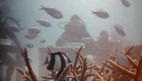 Maledivská vláda zasedala pod vodou