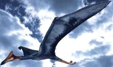 Quetzalcoatlus, největší pterosaurus