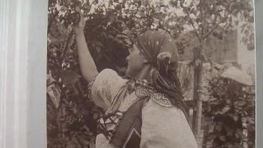 Jihomoravští Charváti