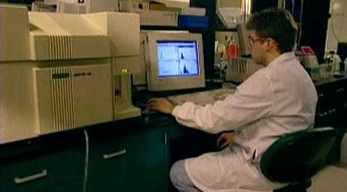 Výzkumné pracoviště