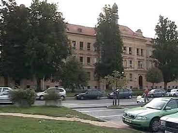 Stromy před školou