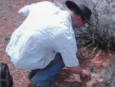 Nález meteoritu v australské poušti
