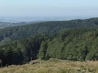 Kolowratské lesy na Rychnovsku