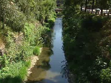 Známý pražský potok Botič