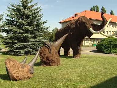Model mamuta