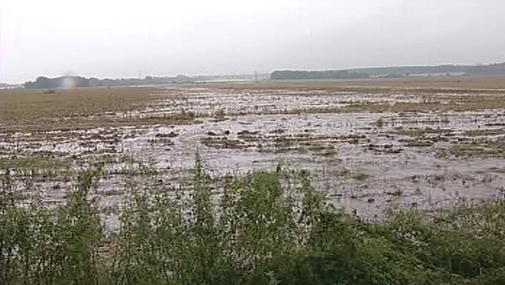 Podmáčená půda na jihu Čech