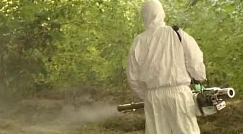 Postřik komářích larev