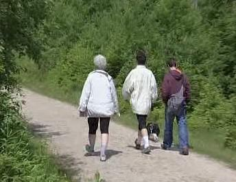 Turisté na Šumavě