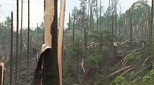 Les po bouřce