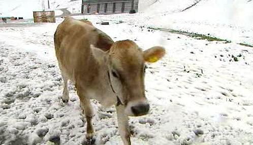 Červencová sněhová nadílka v Tyrolsku