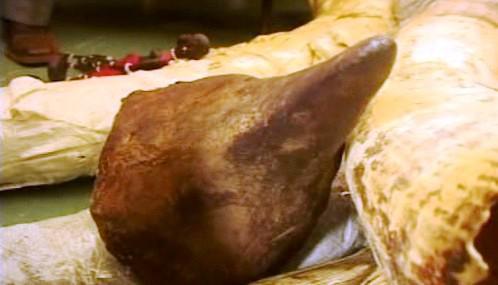 Sloní kly a rohy nosorožců zabavené keňskou policií