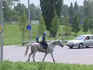 Jezdec v pardubických ulicích