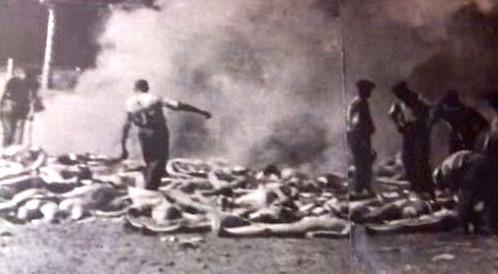 Pálení mrtvých těl
