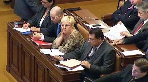 ČSSD v Poslanecké sněmovně