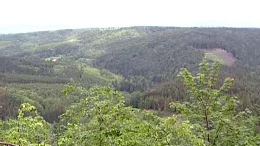 Lesy na Karlovarsku