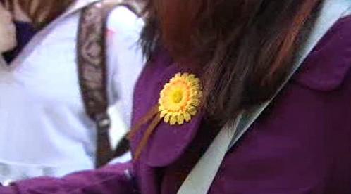 Žlutá květina - symbol boje s rakovinou