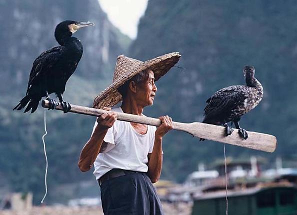 Čínský rybář