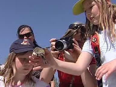 Děti vypouštějí lapeného ptáka