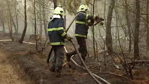Hasiči likvidují lesní požár