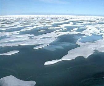 Tající ledové kry