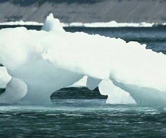 Tající led