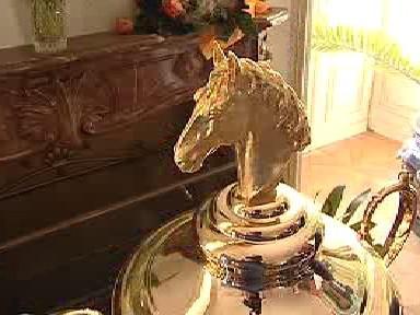 Detail jezdeckého poháru