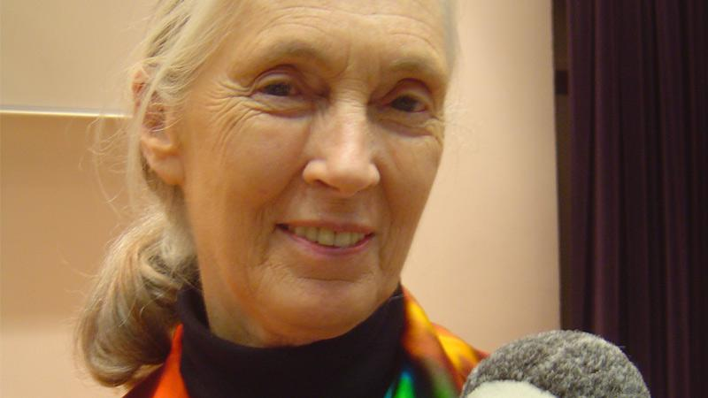 Jane Goodallová