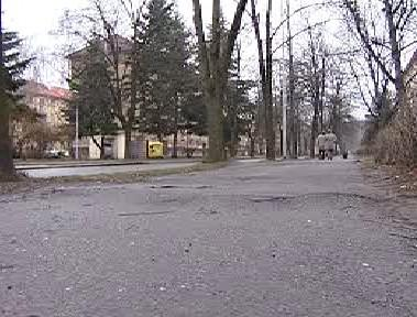 Alej v pardubické ulici Jilemnického