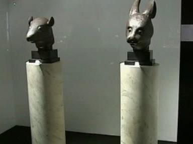 Hlava krysy a zajíce