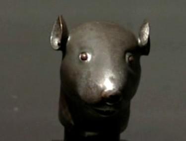 Hlava krysy