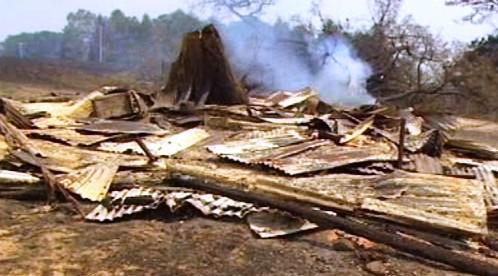 Následky požárů v Austrálii
