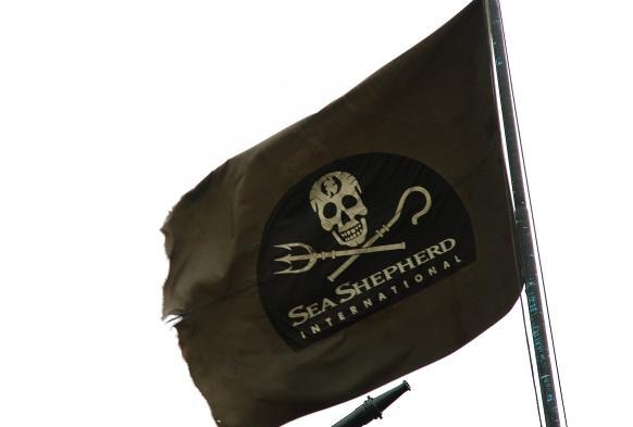 Logo Sea Shepherd