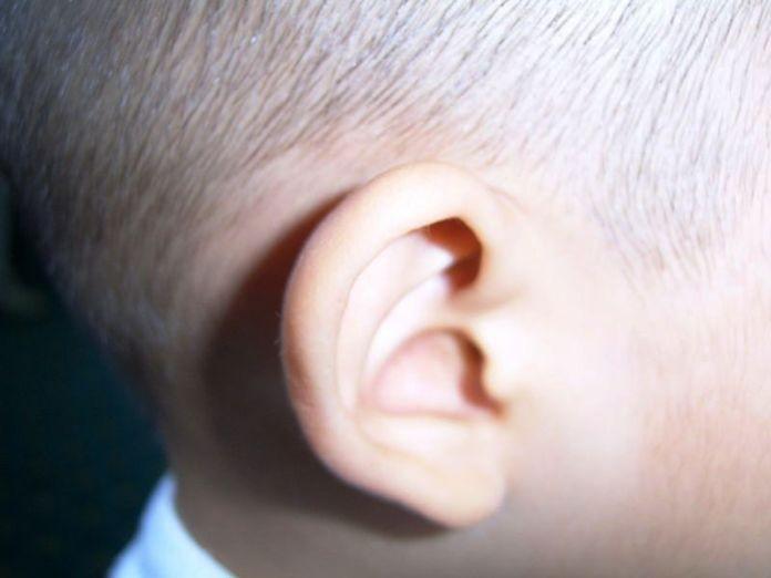 Dětské ucho