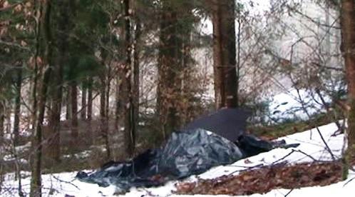 Lesní úkryt