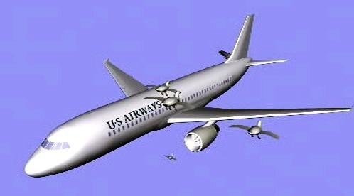 Střet letadla s hejnem ptáků