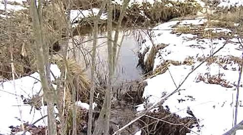 Vydří potok