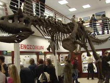 Exponát Chlupáčova muzea historie Země