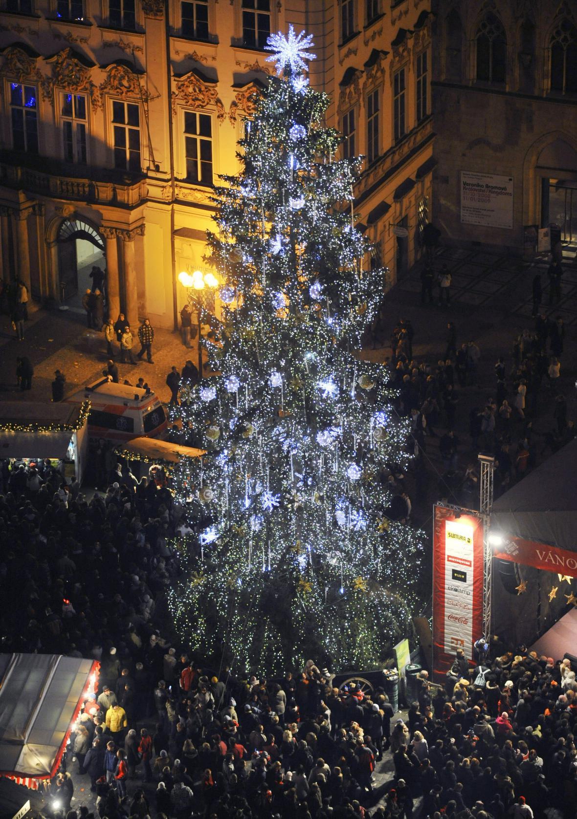 Letošní vánoční strom na Staroměstském náměstí