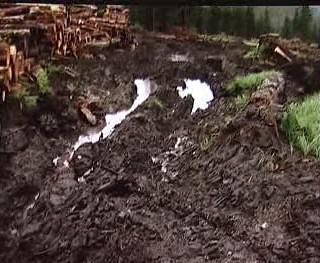 Poškození životního prostředí v Boleticích