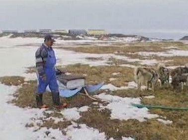 Obyvatel Grónska