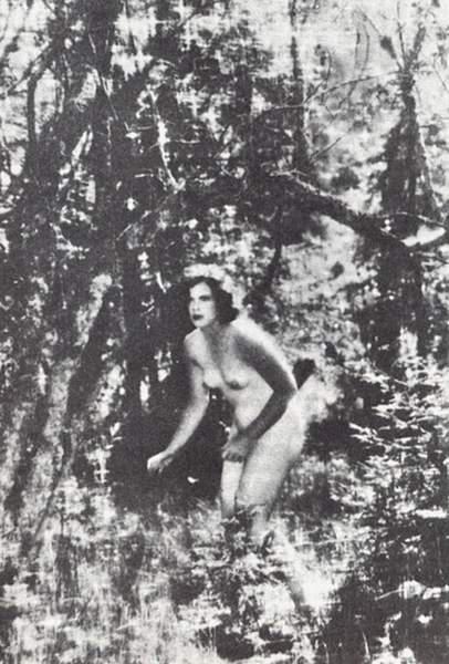 Heda Lamarrová