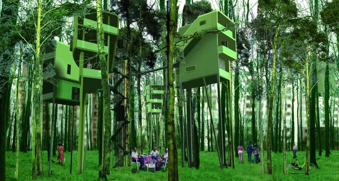Domy ve stromech