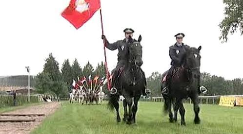Průvod koní