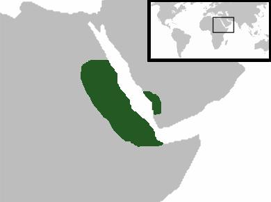 Aksumská říše
