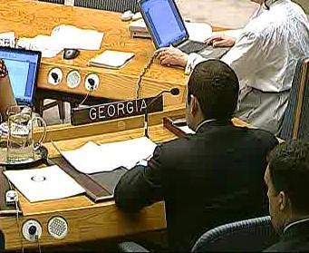 Zástupce Gruzie v OSN