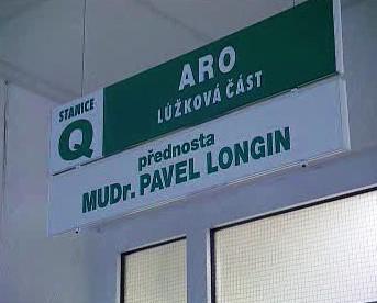 ARO - Pavel Longin