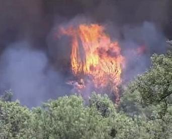 Hořící porost na ostrově Rhodos