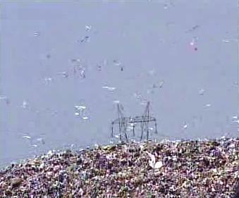 Skládka odpadků